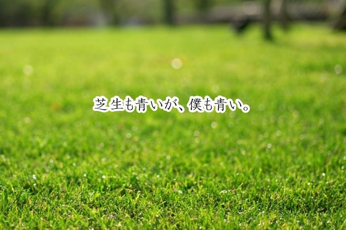 ブログを見る・書くのがツラい「隣の芝生が青い症候群」3つの対策